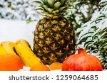 tropical fruits in the snow | Shutterstock . vector #1259064685