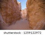 wadi watir  sinai   egypt   may ... | Shutterstock . vector #1259122972