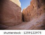 wadi watir  sinai   egypt   may ... | Shutterstock . vector #1259122975