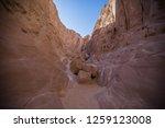 wadi watir  sinai   egypt   may ... | Shutterstock . vector #1259123008