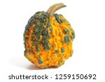 """Pumpkin """"red Warty""""  On White..."""