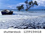 the waves of the sea produce... | Shutterstock . vector #1259154418