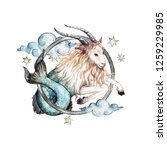 Capricorn   Zodiac Symbol....