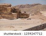 south sinai  sinai   egypt   25 ... | Shutterstock . vector #1259247712