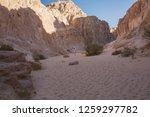 wadi watir  sinai   egypt   may ... | Shutterstock . vector #1259297782
