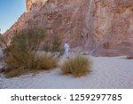 wadi watir  sinai   egypt   may ... | Shutterstock . vector #1259297785