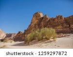 wadi watir  sinai   egypt   may ... | Shutterstock . vector #1259297872