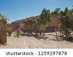wadi watir  sinai   egypt   may ... | Shutterstock . vector #1259297878