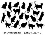 set vector silhouettes of the... | Shutterstock .eps vector #1259460742