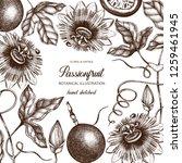 purple passionfruit hand drawn... | Shutterstock .eps vector #1259461945
