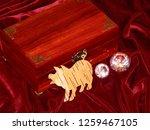 handmade mahogany jewelry box | Shutterstock . vector #1259467105