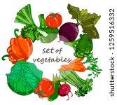 vector hand drawn vegetables.... | Shutterstock .eps vector #1259516332