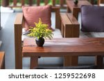 ceramic vase with a bouquet of... | Shutterstock . vector #1259522698