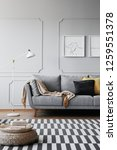real photo of a grey sofa ... | Shutterstock . vector #1259551378