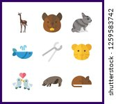 9 wildlife icon. vector... | Shutterstock .eps vector #1259583742