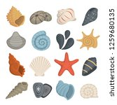 Sea Shell Vector Icons In...