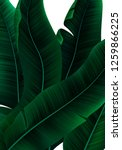 tropical banner with realistic... | Shutterstock .eps vector #1259866225