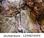 cave wall stone background... | Shutterstock . vector #1259874595