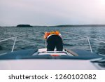 man sick on a yacht at sea.... | Shutterstock . vector #1260102082
