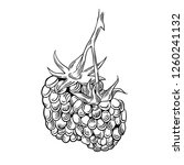 illustration of drawing... | Shutterstock .eps vector #1260241132