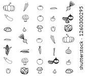 a set of vegetables. | Shutterstock .eps vector #1260300295