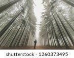 Man In Foggy Path In Autumn...