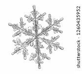 snowflake isolated on white... | Shutterstock .eps vector #1260435952