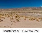 dry high altitude landscape of... | Shutterstock . vector #1260452392