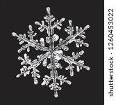 white snowflake isolated on... | Shutterstock .eps vector #1260453022
