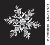 white snowflake isolated on... | Shutterstock .eps vector #1260457645