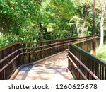 Walking Deck In A Nature Park