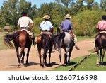 gauchos dressed up in... | Shutterstock . vector #1260716998