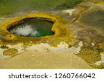 this geyser is actually in... | Shutterstock . vector #1260766042