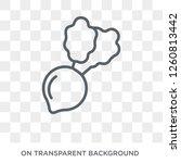 radish icon. radish design... | Shutterstock .eps vector #1260813442