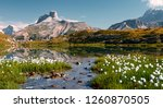 awesome mountains landscape... | Shutterstock . vector #1260870505