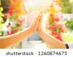 beautiful hands of a child and... | Shutterstock . vector #1260874675
