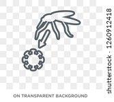 zika virus icon. trendy flat... | Shutterstock .eps vector #1260912418