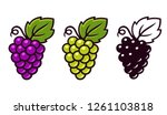 grapes icon set  red  white and ... | Shutterstock .eps vector #1261103818
