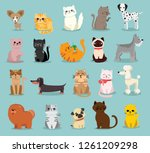 vector illustration set of cute ... | Shutterstock .eps vector #1261209298