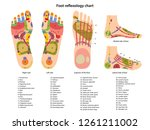 reflex zones on the feet with... | Shutterstock .eps vector #1261211002