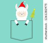 alpaca llama sitting in the...   Shutterstock .eps vector #1261282975