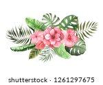 set of watercolor hand painted... | Shutterstock . vector #1261297675