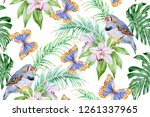 the finch  orchids and... | Shutterstock . vector #1261337965