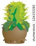 vector ornamental plant in pot.   Shutterstock .eps vector #126152282