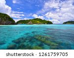 cockburn island landscape of... | Shutterstock . vector #1261759705