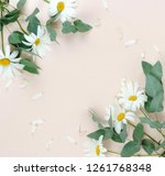 Flowers Composition Background...