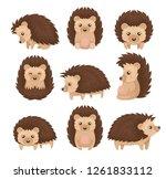 cute hedgehog in various poses... | Shutterstock .eps vector #1261833112