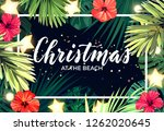 tropical christmas on the beach ... | Shutterstock .eps vector #1262020645