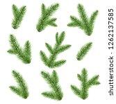 fir tree branch isolated | Shutterstock . vector #1262137585