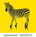 Zebra Black And White On A...